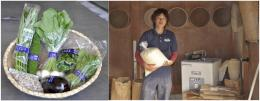 【湘南のこだわり食材詰め合せ】 新鮮「旬の湘南野菜」& 平塚さん家のこだわり精米「特別栽培米 新米5kg」