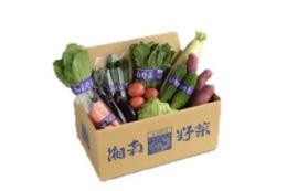 旬の湘南野菜 直販便(6ヶ月パック:令和1年10月より新価格)